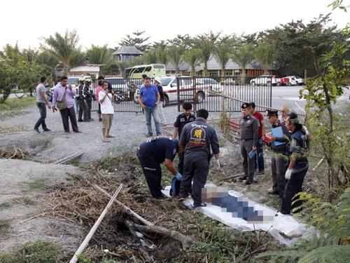 游客搞恶作剧激怒大象中国领队前往救助被踩身亡