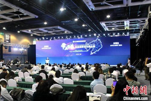 中国侨网带土移植科技招商引才推介会现场。 王景巍 摄