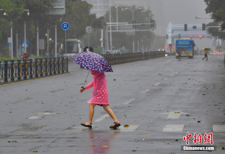 """台风""""沙德尔""""携风雨影响海南"""
