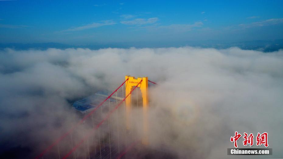 跨越中华鲟保护区的长江大桥获鲁班奖