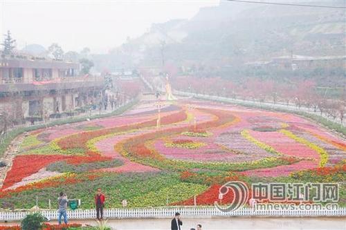 中国侨网恩平花海欢乐世界是一个农业观光旅游项目,集自然观光,花卉
