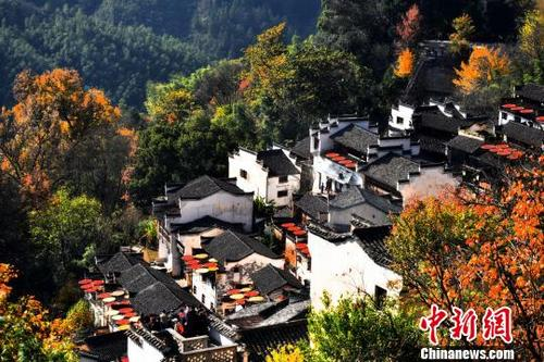 中国最美乡村江西婺源风景美如画