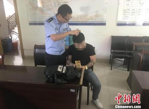 中国侨网采集毛发。 胡昌清 摄