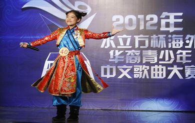 """2012""""文化中国·水立方杯"""""""