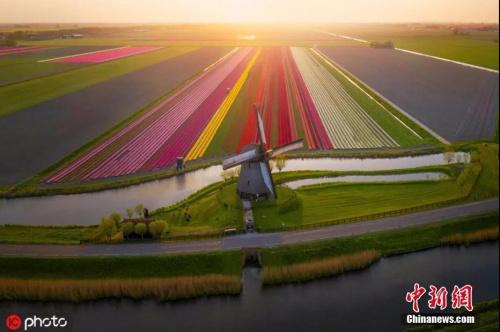资料图:荷兰