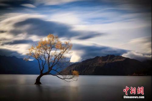 资料图:新西兰瓦纳卡湖LakeWanaka。<a target='_blank' href='http://www.chinanews.com/'>中新社</a>发 张钟明 摄
